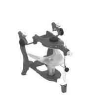 Articulator Anatomical